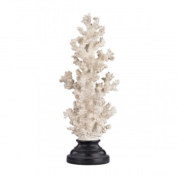 Aged White Coral On Stand - Tall