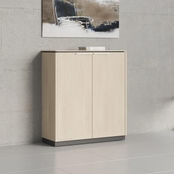 Status 2 Door Storage Cabinet X31, Canadian Oak