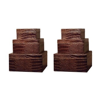 Alligator Square Box, Set of 6