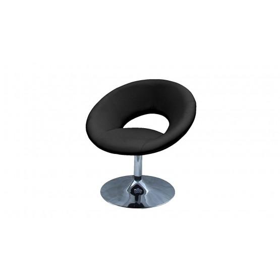 Alden Leisure Chair photo