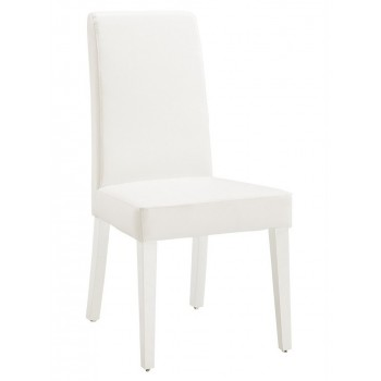 DG020-BR Dining Chair, White